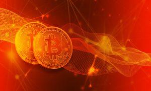 treuhänderischer Vermögensverwalter bei Bitcoin Code konzentrieren